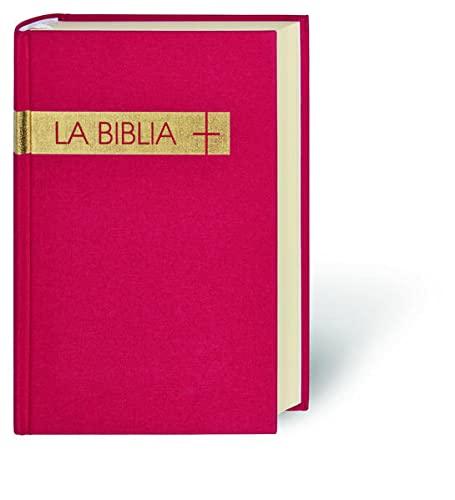 Santa Biblia: La Biblia De Estudio (Hardback)