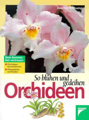 So bl?hen und gedeihen Orchideen. Orchideen kennenlernen.