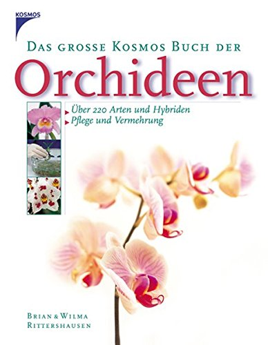 orchideen by brian rittershausen abebooks. Black Bedroom Furniture Sets. Home Design Ideas