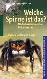 9783440092101: Welche Spinne ist das? Die bekanntesten Arten Mitteleuropas.