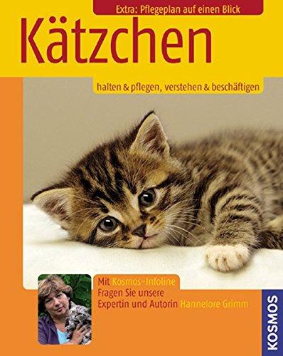 9783440103920: Kätzchen: Halten & Pflegen, Verstehen & Beschäftigen