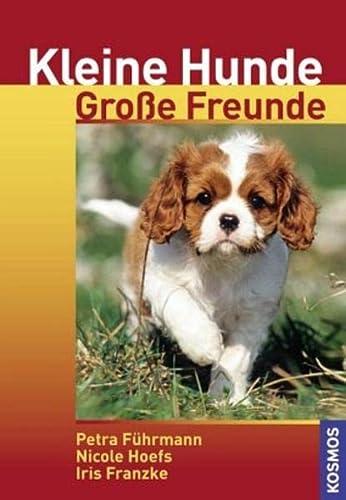 9783440104835: Kleine Hunde - Gro�e Freunde