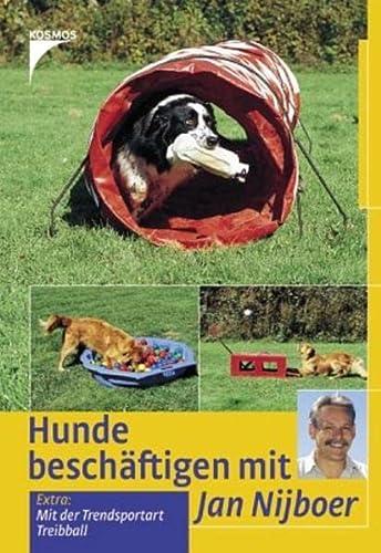 9783440106686: Hunde besch�ftigen mit Jan Nijboer: Mit der Trendsportart Treibball