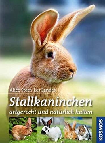 Stallkaninchen: Alice Stern-Les Landes