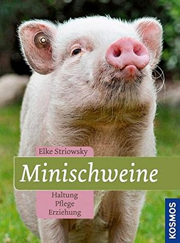 9783440132371: Minischweine: Haltung, Pflege, Erziehung