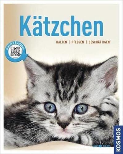 9783440132524: Kätzchen: halten, pflegen, beschäftigen