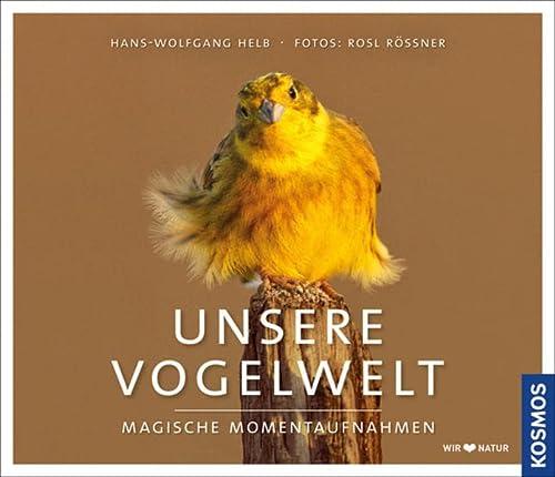 9783440142233: Unsere Vogelwelt: Magische Momentaufnahmen