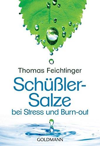 9783442173976: Schüßler-Salze bei Stress und Burn-out