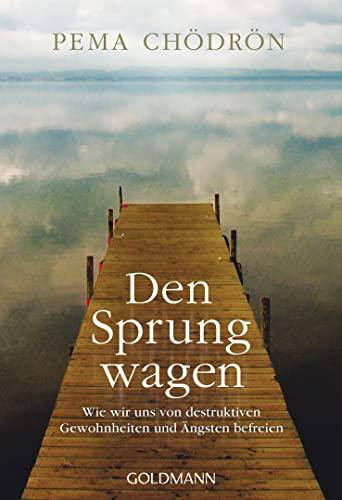 Den Sprung wagen (9783442220120) by [???]