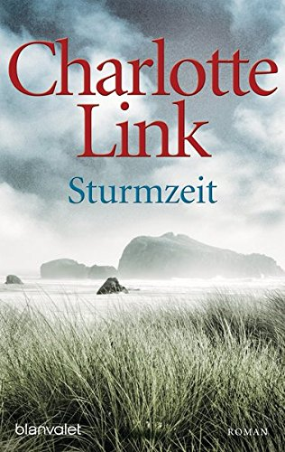 9783442374168: Sturmzeit: Roman