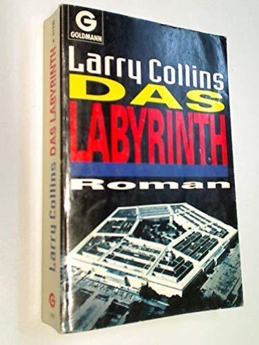 9783442413355: Das Labyrinth. Roman