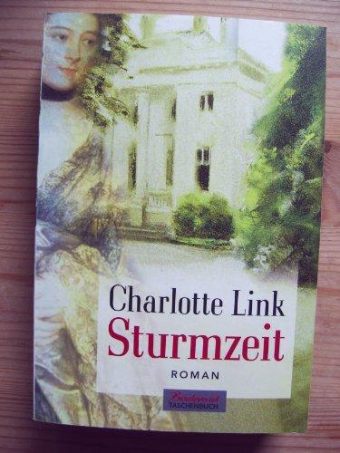 9783442456550: Sturmzeit. Roman.