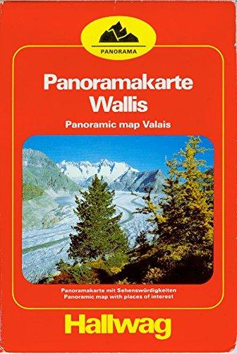 9783444003141: Valais: Panoramic Map