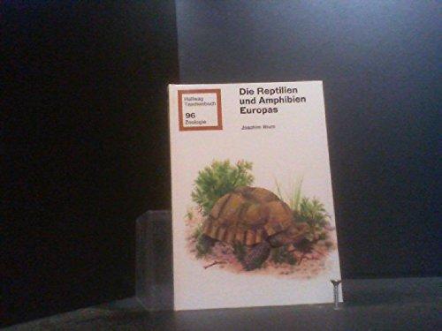 9783444500862: Die Reptilien und Amphibien Europas