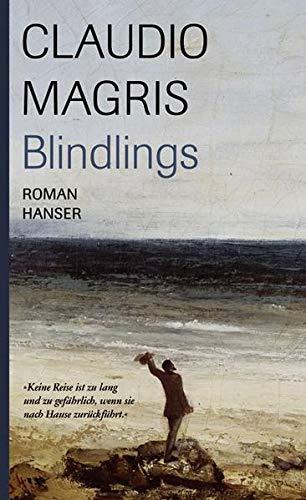 9783446208254: Blindlings