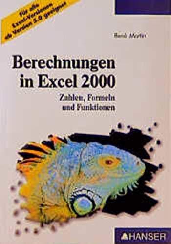 9783446210110: Berechnungen in Excel 2000. Zahlen, Formeln und Funktionen
