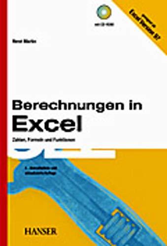 9783446218468: Berechnungen in Excel