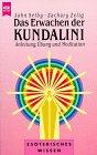 9783453093454: Das Erwachen der Kundalini
