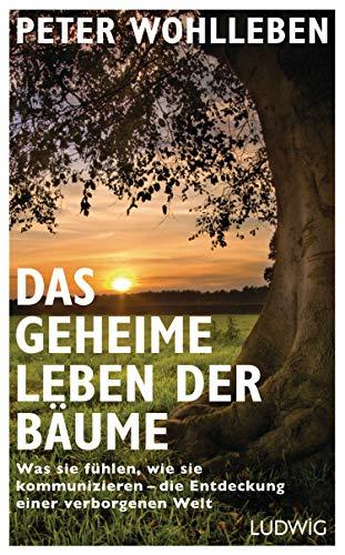 9783453280670: Das geheime Leben der Bäume