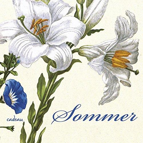 9783455381146: Sommer: Ein Poesiealbum - zusammengestellt von Günter Berg