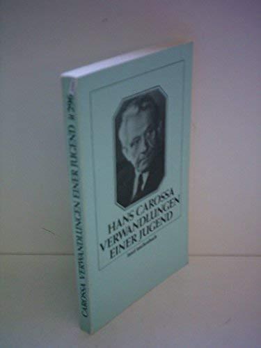9783458319962: Verwandlungen einer Jugend (Insel Taschenbuch) (German Edition)