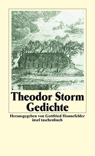 Gesammelte Werke: Gedichte: BD 1 (insel taschenbuch): Storm, Theodor
