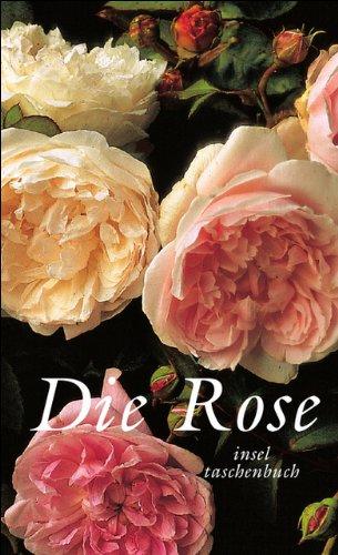 9783458343196: Die Rose
