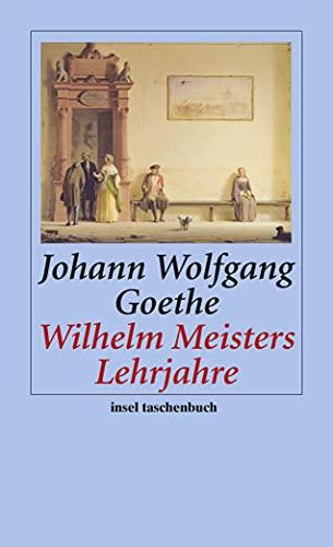 9783458352501: Wilhelm Meisters Lehrjahre