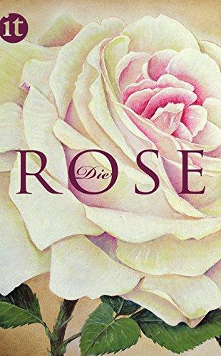 9783458358312: Die Rose