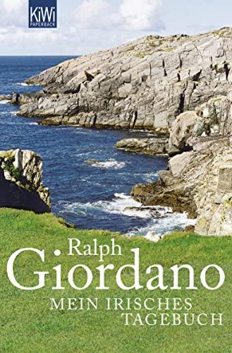 9783462039573: Mein irisches Tagebuch