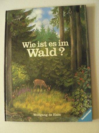 9783473301867: Wie ist es im Wald?