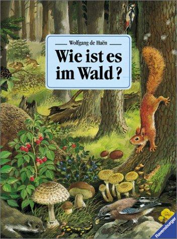 9783473306893: Wie ist es im Wald?. Mit neuer Rechtschreibung