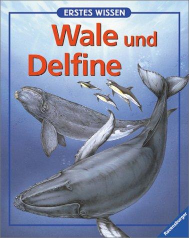 9783473358366: Erstes Wissen, Wale und Delfine