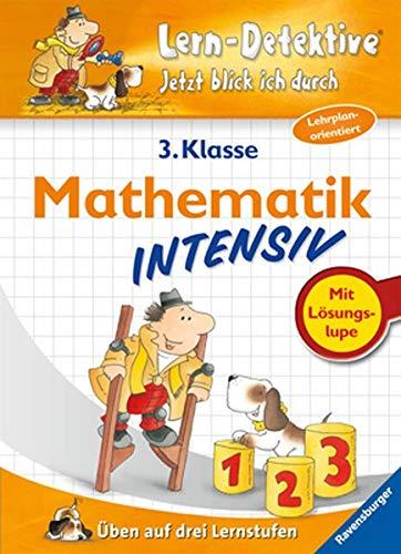 9783473414437: Lern-Detektive. Mathematik intensiv (3. Klasse): Üben auf drei Lernstufen. Jetzt blick ich durch