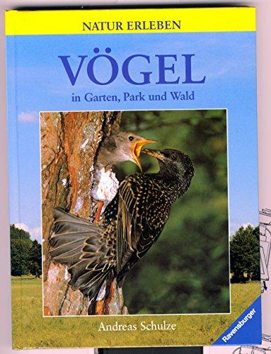 Natur erleben: Vögel in Garten, Park und: Schulze, Andreas und