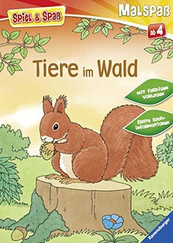 9783473558254: Tiere im Wald: Malspaß