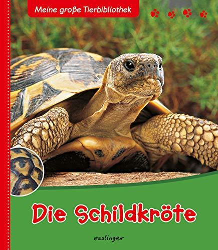 9783480224623: Die Schildkröte