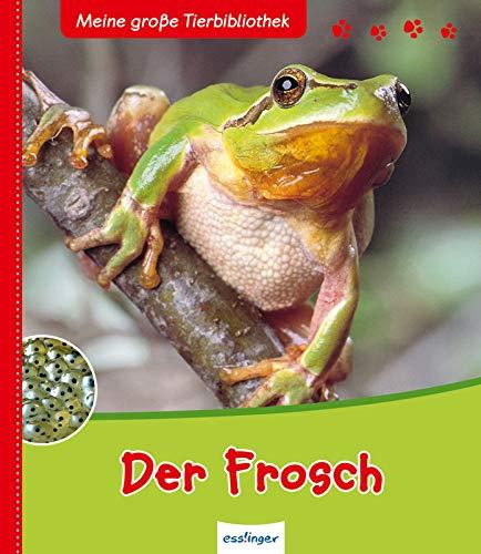 9783480226375: Der Frosch (Meine große Tierbibliothek)