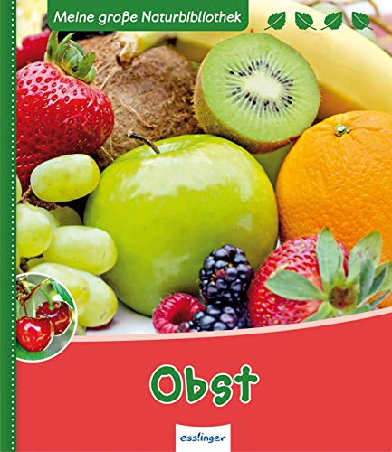 9783480231058: Obst