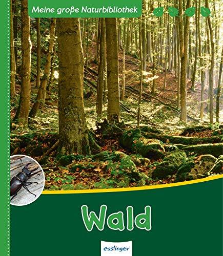 9783480232932: Meine große Naturbibliothek: Wald
