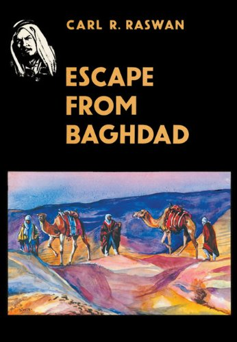 9783487081588: Escape from Baghdad