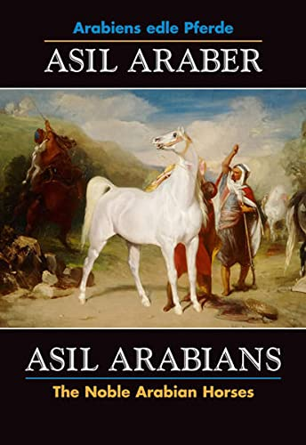 Asil Araber / Asil Arabians 6