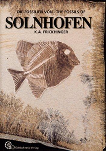 9783494013480: Die Fossilien von Solnhofen