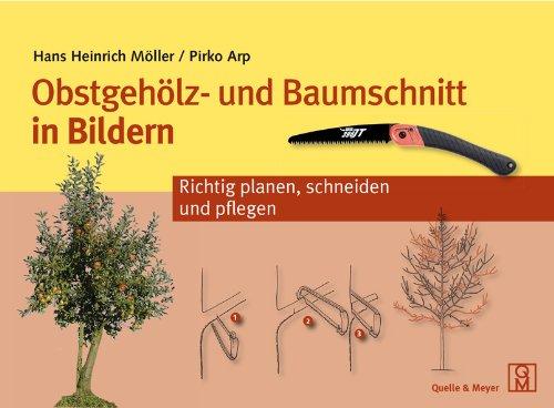 9783494014814: Obstgehölz- und Baumschnitt in Bildern: Richtig planen, schneiden und pflegen