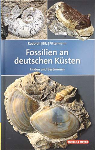 9783494015903: Fossilien an deutschen Küsten: Finden und Bestimmen