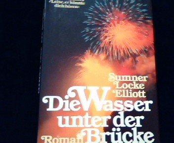 9783498016258: Die Wasser unter der Brücke. Roman
