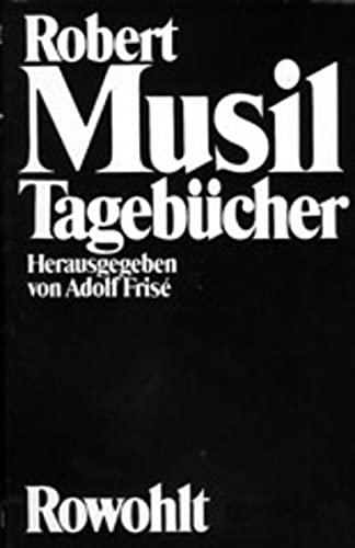 9783498092894: Tagebücher (German Edition)