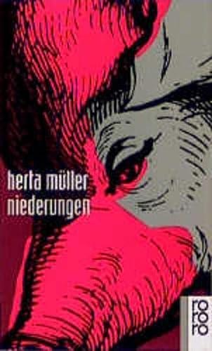 9783499133602: Niederungen (German Edition)