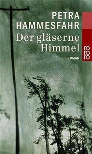 9783499228780: Der gläserne Himmel. Roman.