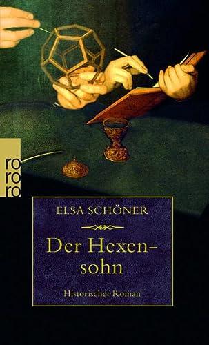 9783499243776: Der Hexensohn. Historischer Roman